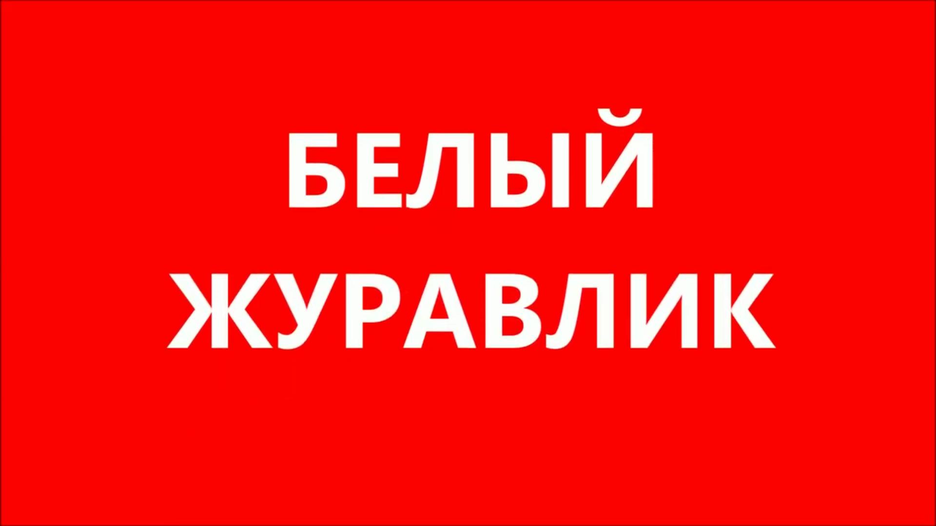 """Музыкально - литературная композиция """"Белый журавлик"""""""